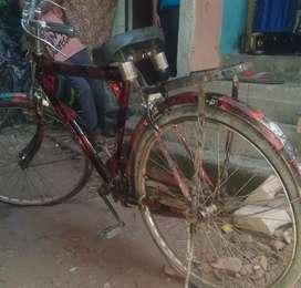 ATLAS  modern bicycle