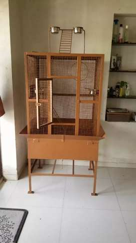 Bird Cage... large, comfort and stylish