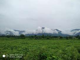 110 gaj plote near pirumdara bypass