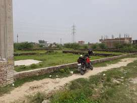 Dahelu Sujanpur (500mtr from Mother teresa Higher secondary school.