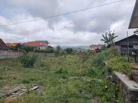 Edisi BU tanah luas murah cocok untuk investasi di Sumbergondo Kota Ba