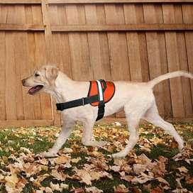 Shoonya Dog Harness -No-Pull Brand NEW Free Shipping COD Available