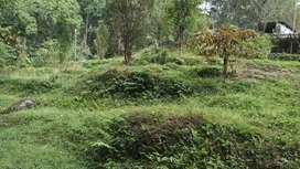 General roadside land for commercial purpose near Ranipul Sikkim