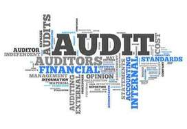 AudiTax Consulting Co., (Auditor & Tax Consultant)
