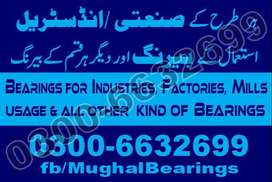 Double Single row Cylindrical Roller Bearings