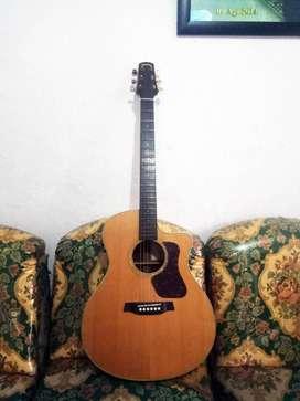 Gitar Akustik Walden