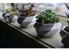 Pot for planting
