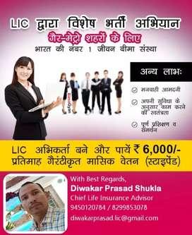 Lic of india good work