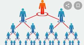 Network marketing work different projects different working