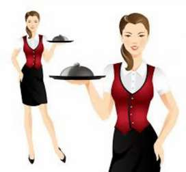 Need Girl Waiter for parties and function.