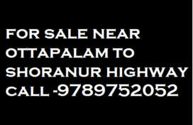 Beautiful house for sale at Low cost in Pattambi