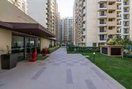 Live with silence place with natural all amenities in side the Complex