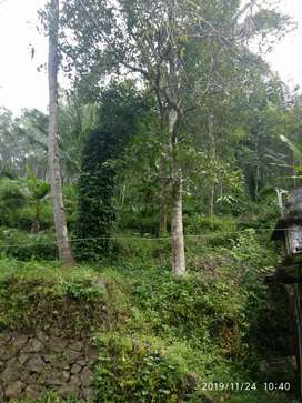 Pathanamthitta - Seethathode - 1 km from bus stand and market