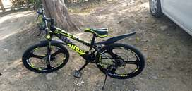 24 inch Cycle