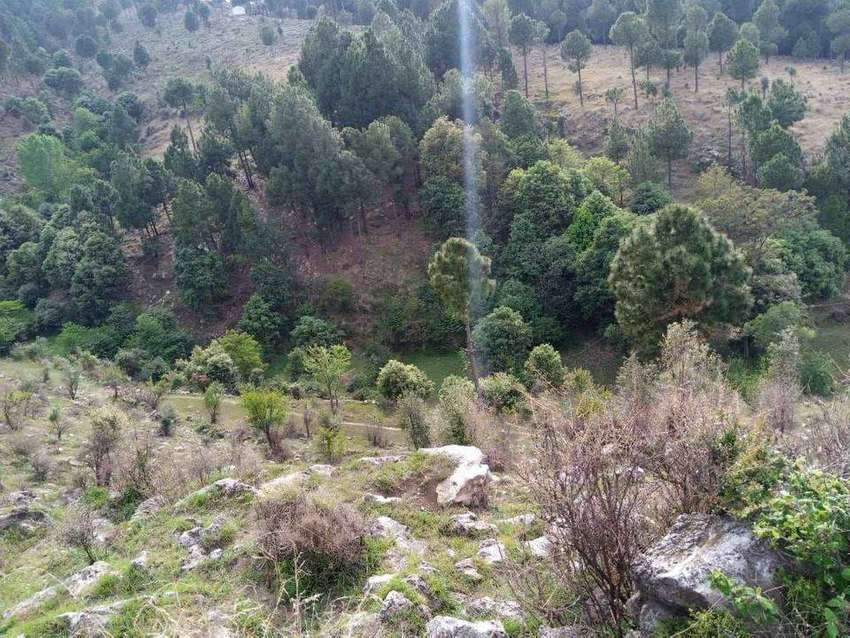 150 canal area for sale in Abbottabad