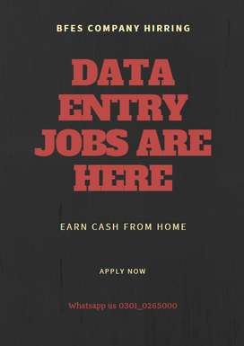 We are here to Offer you Data Entry Job offers online from home