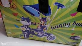 Bunny Bunny 2 in 1 tri- cycle for 12+