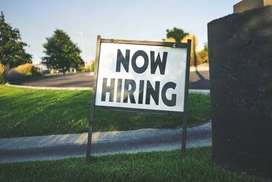 sales executive opening urgnet
