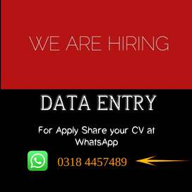 Online Home Based MS Excel/Word (DATA ENTRY)Working  For Fresh Females