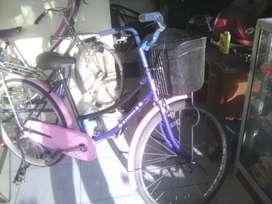 sepeda mini bekas