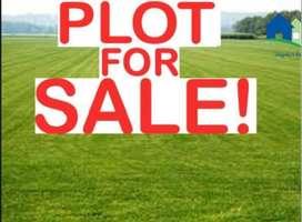 plots for sale at palakkad-kanjikode with 70% to 90% loan facility