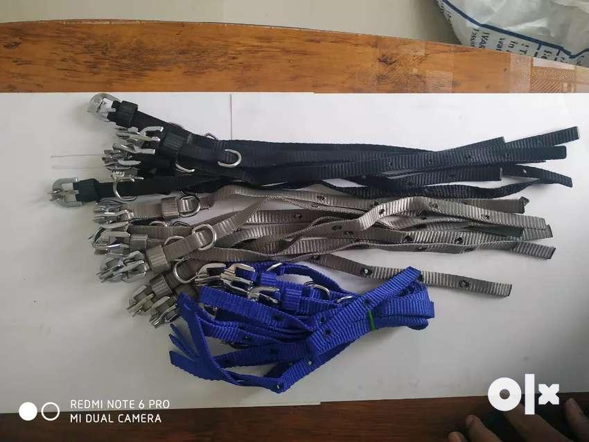 Belts& leashe