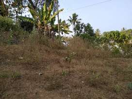 80 Cent Land for sale in Thevakkal Kakkanad