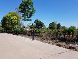tanah poros jalan raya