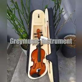 Violin import greymusic seri 268