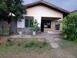 Dijual rumah permanen(utama) dan semi permanen(kontrak)  250 juta/nego