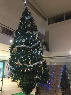 16ft X-Mas tree for 10,000 Rs.