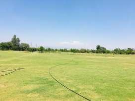 Plot for Sale Near Chandigarh zirakpur mohali aerocity it city airport