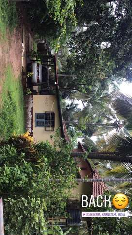 13.3 cent land with a house ,open land,well,plenty tre.Conversion done