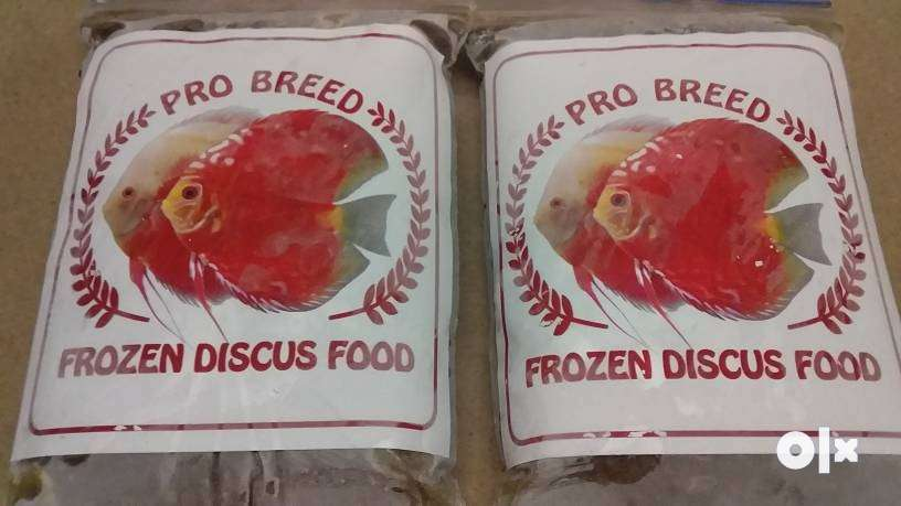 Discus Fish Food (Frozen) 0