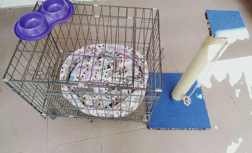 Jual Kandang Kucing Second (Harga Pas). 0