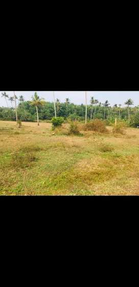 Land for sale in kalathinkara kaduppassery