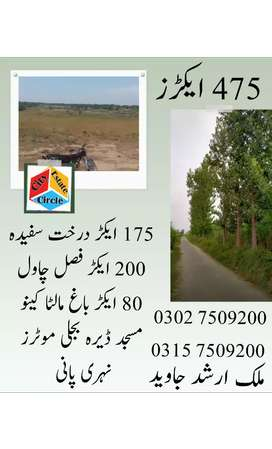 Agricultural Land in cheap price