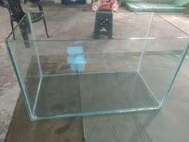 Fish tank and aquarium