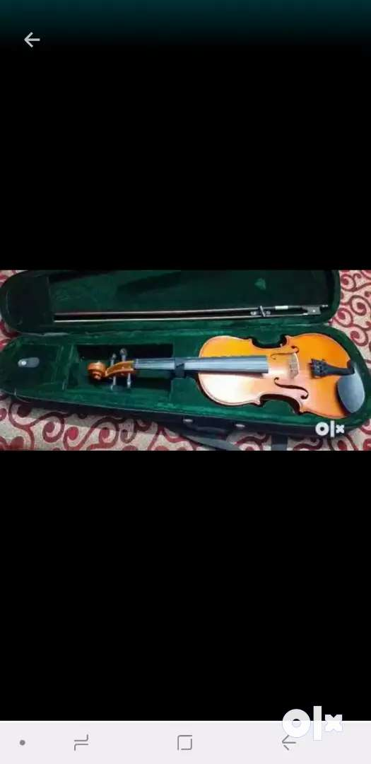 Brand parrot violin is for selling 0