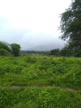 BORIVALI EAST NATIONAL PARK OPEN PLOT AVAILABLE FOR RENT