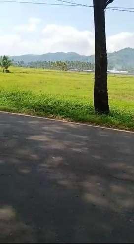 Tanah murah di pinggir jalan UtamaTrans Sulawesi