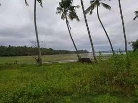 5 cents of land at Kunnathangadi Thrissur