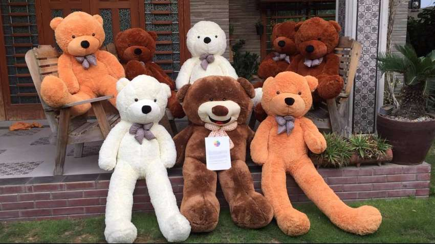Huge Collection Of Teddy Bears 2ft-6ft At Nominal Prices 0