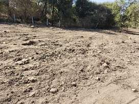 Farmland for sale near aura mall