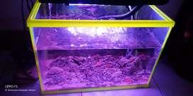 Jual aquarium  ukuran L bru 1bln