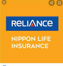 Work as a Lic agent in relience Nippon life insurance
