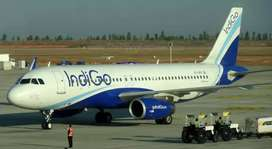 make your career in indigo airlines apply fast