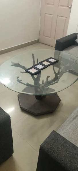Tree shaped centre table for sale
