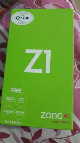 Zong Z1 with box
