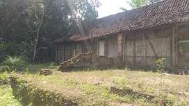 Di sewakan tanah beserta bangunan